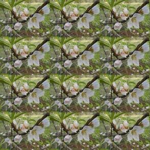 White Blossom Chevron - Horizontal Stripe (Ref. 1689 b.)