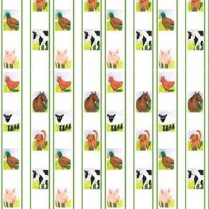 Farm_animal_stripe_green