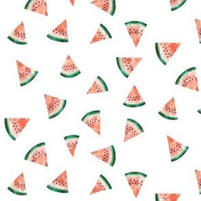 Watermelon Watercolour