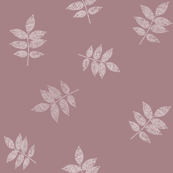 Mauve Beech Leaves