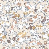 Brittanys in Blankets Cream