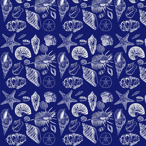 Shell_Fabric_NAVY