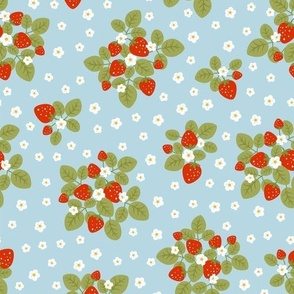 strawberry patch blue