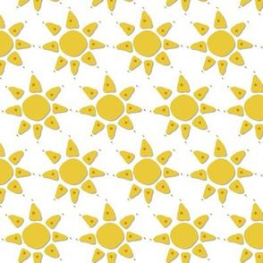 summer woodland sun