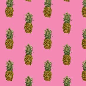 Large Pink Pineapple