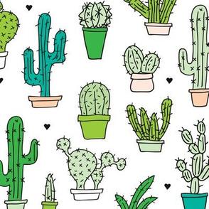 Cactus cacti garden botanical succulent green garden pattern illustration print