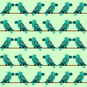 papegaai_blue-green