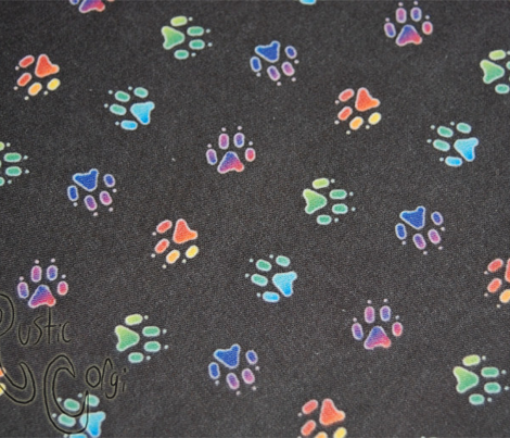 Rainbow trotting paw prints - black
