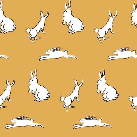 Rcestlaviv_rabbit_s18_caramel_shop_preview