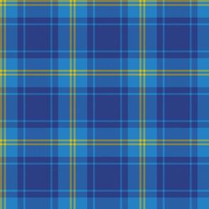 "Hepburn blue tartan, 6"""