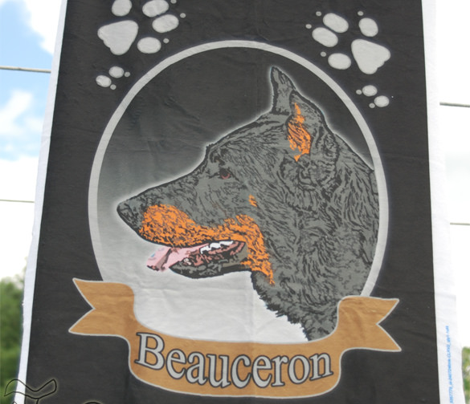 Beauceron panel - fat quarter