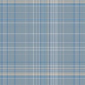 Classic Blue and Gray Plaid