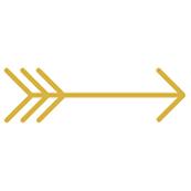 Golden Arrows // small