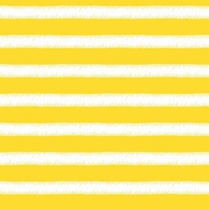 White on Yellow Stripe