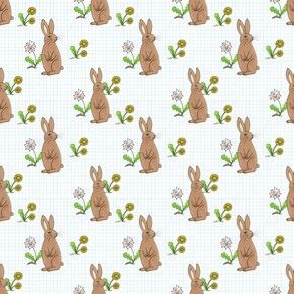 Rabbits and Dandelions on checks