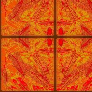 Orange Croton