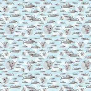 CUSTOM-flying_sharks_final_SMALL