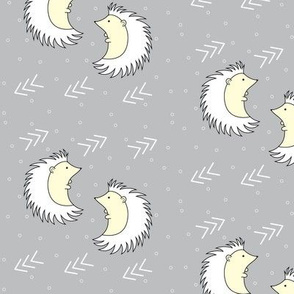 Southwest Hedgehogs