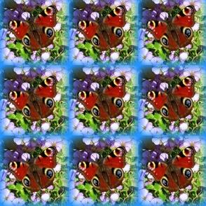 IMG_0958_peackock_fabric_001-ed