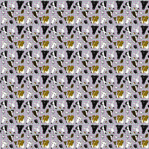 Smooth Fox Terriers in Pastel plaid TINY