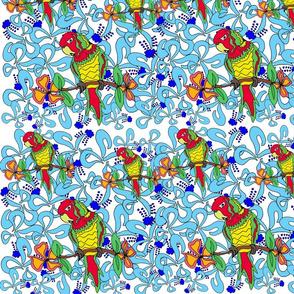 parrots parrots!