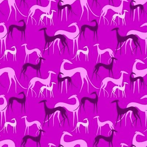 sighthounds pink small