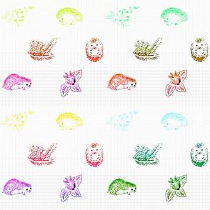 Rainbow Hedgehogs