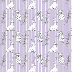 purple bunny lavender