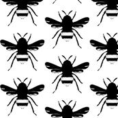 Black & White Bees