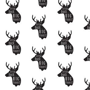 Little Buck Big Forest