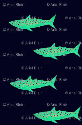 sharks-001