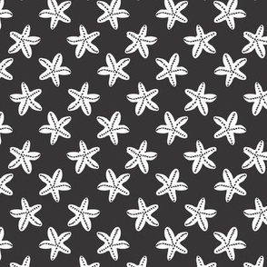starfish_coast_palette_blackwhite