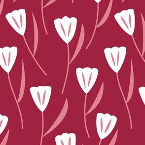 Tulips Berry (Sweet)