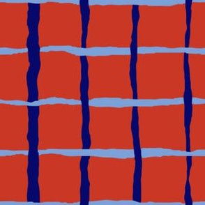Red and Blue Net