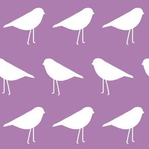 White Birds on Purple Background