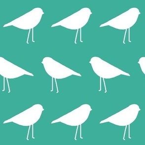 White Birds on Bright Turquoise