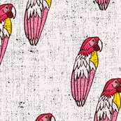 Rbananarama_parrot_shop_thumb