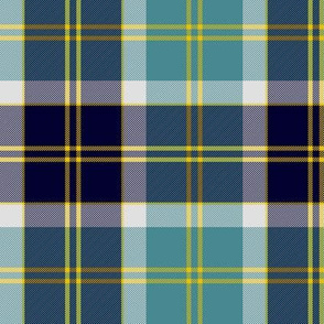 Bannockbane trade tartan - black and teal