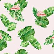 Rrbanana_leaves___flamingos_ii_ed_shop_thumb