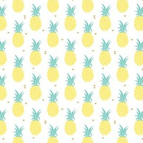 Pineapples - small scale