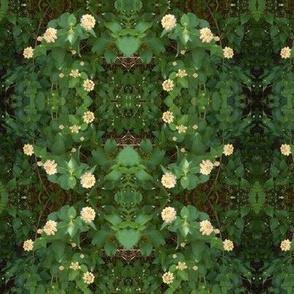 Green Garden Realm Wreaths (Ref. 1401)