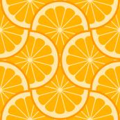 citrus scale 4g X - orange mandarin tangerine satsuma clementine