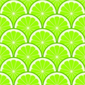 04293520 : citrus scale 1x X : lime