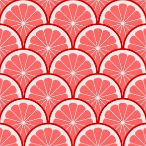 04295435 : citrus scale 1x X : red