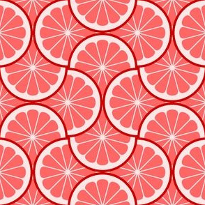 04295436 : citrus scale 4g X : red