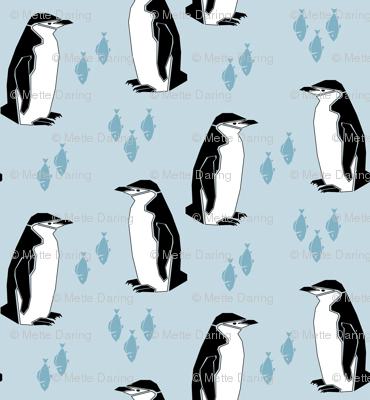 Preppy Penguin - Light Blue
