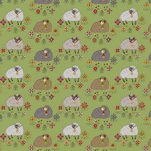 Meadow Sheep