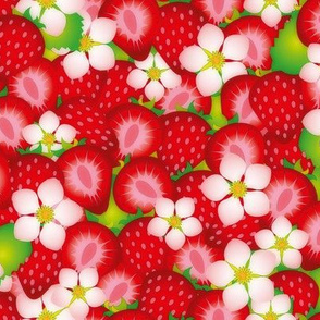 Strawberry field 2