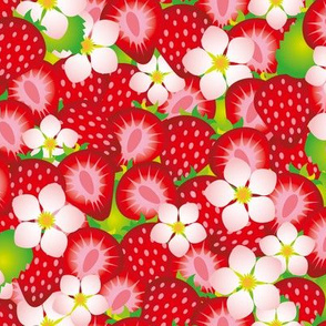 Strawberry field 1