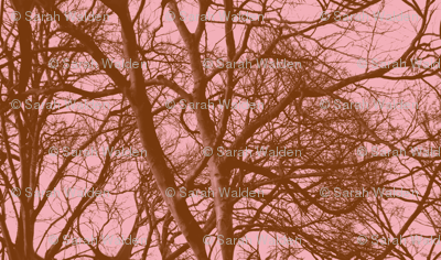 The Tree Lace ~ Pink & Brown ~ Medium
